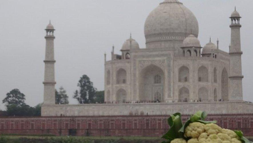 Devant le Taj Mahal à Agra dans l'État de l'Uttar Pradesh, en Inde.