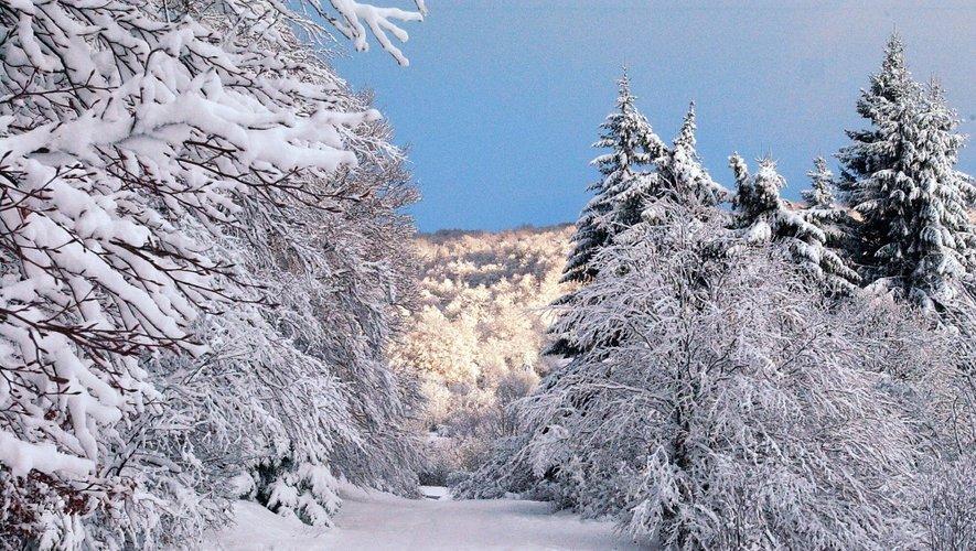La nature va commencer à se parer de blanc.Il a déjà neigé sur l'Aubrac.