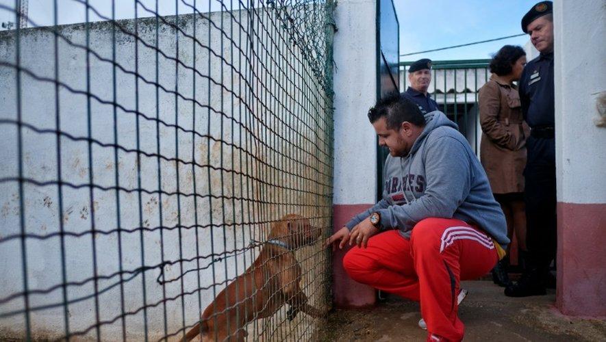 Un détenu de la prison de haute sécurité de Monsanto caresse un chien à travers un grillage, le 24 octobre 2016 à Lisbonne, au Portugal