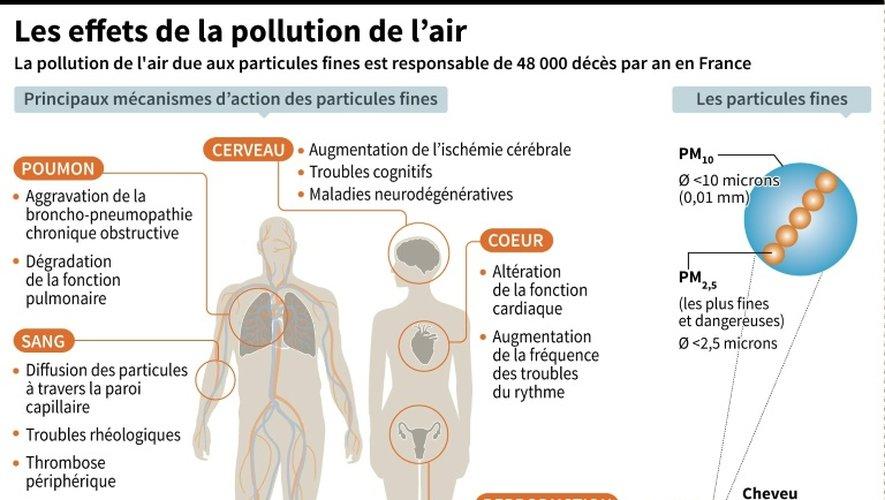 Principaux impacts sur la santé de la pollution de l'air due aux particules fines