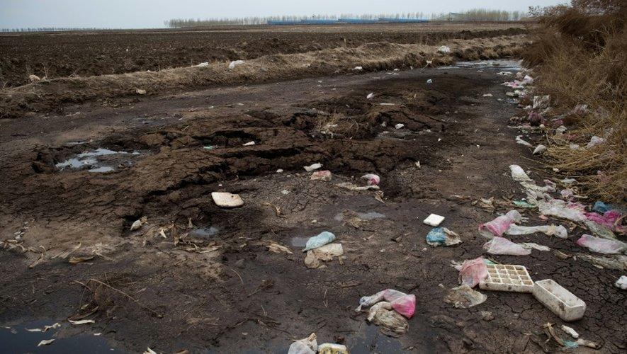 Seringues et emballages de médicaments vétérinaires usagés jonchent le sol à proximité d'une ferme géante le  3 mai 2016 à Gannan en Chine