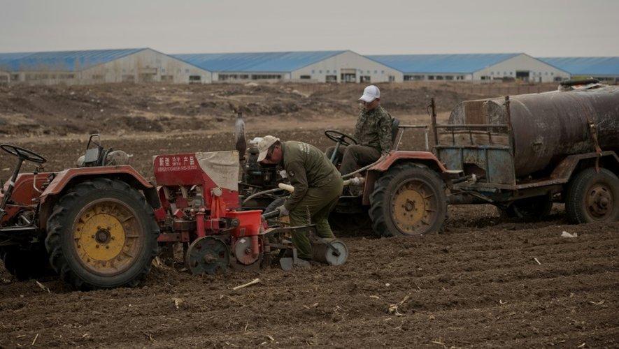 Des paysans dans une ferme géante le 3 mai 2016 à Gannan en Chine
