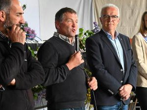 VIDÉO. Aveyron: neuf élevages aubrac au départ de la 37e édition de la transhumance