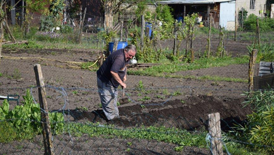 Les jardiniers amateurs tardent un peu à reprendre les outils.