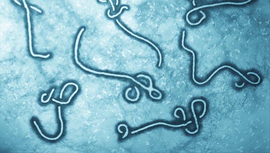 République démocratique du Congo : Ebola fait son retour