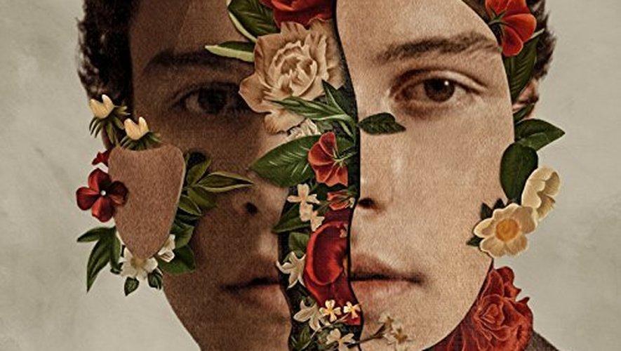 """Shawn Mendes: The Album"" sort le 25 mai."