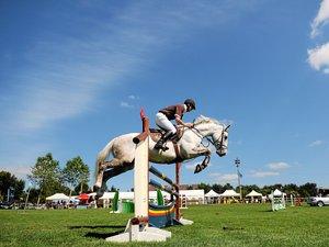Équitation à Combelles, quatre jours entre voltige et saut d'obstacles