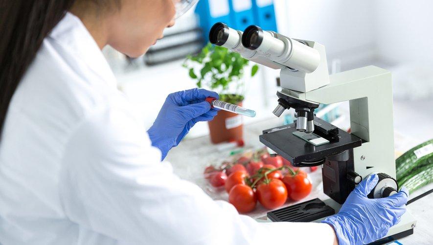 """Le dispositif """"Alim'confiance"""", mis en place il y a un an par le gouvernement français afin de mettre en valeur les contrôles sanitaires effectués par l'Etat tout au long de la chaîne alimentaire, doit être amélioré."""