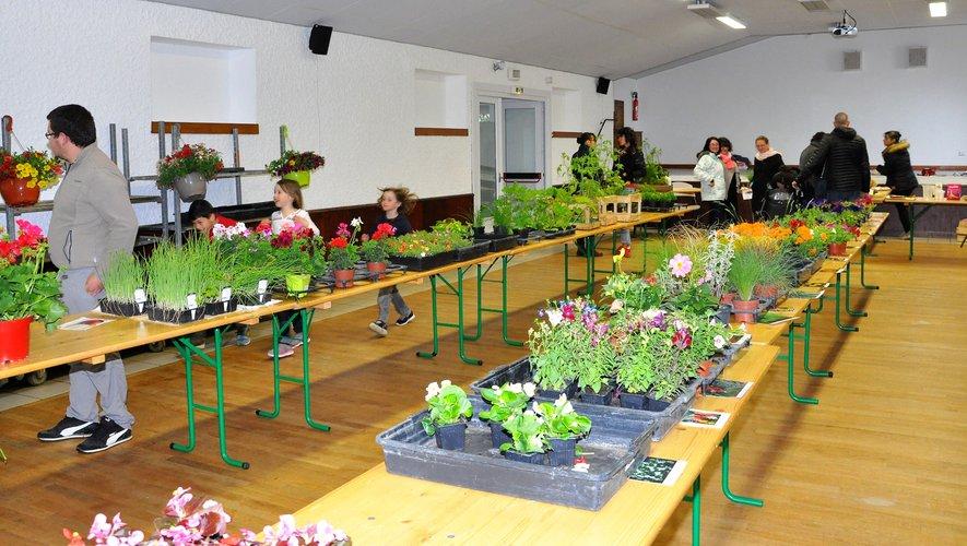 Bonne fréquentation du marché aux fleurs organisé par l'APE.