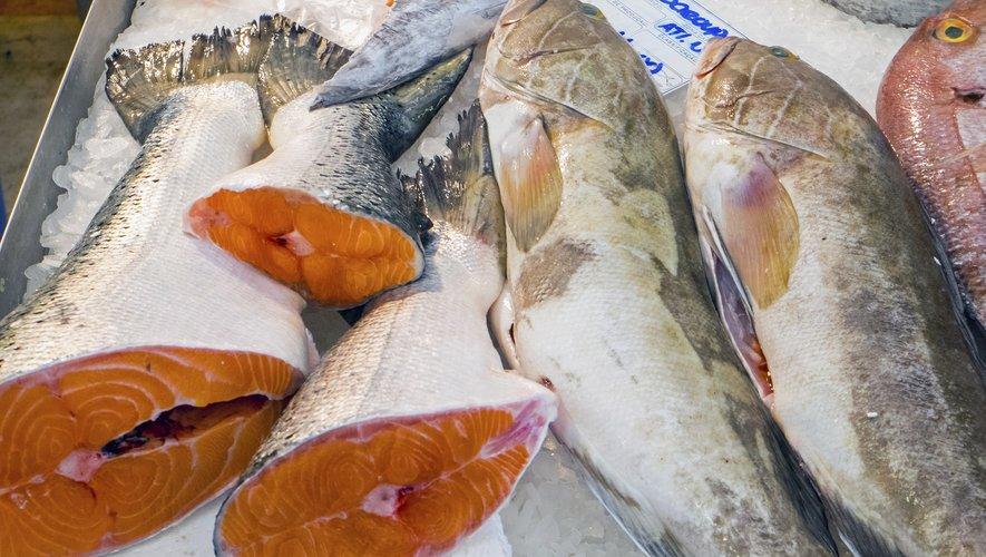 La consommation bi-hebdomadaire de poisson contribue à la bonne santé cardiaque