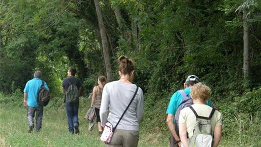 Et si vous participiez aux 24 heures de la Biodiversité en Aubrac