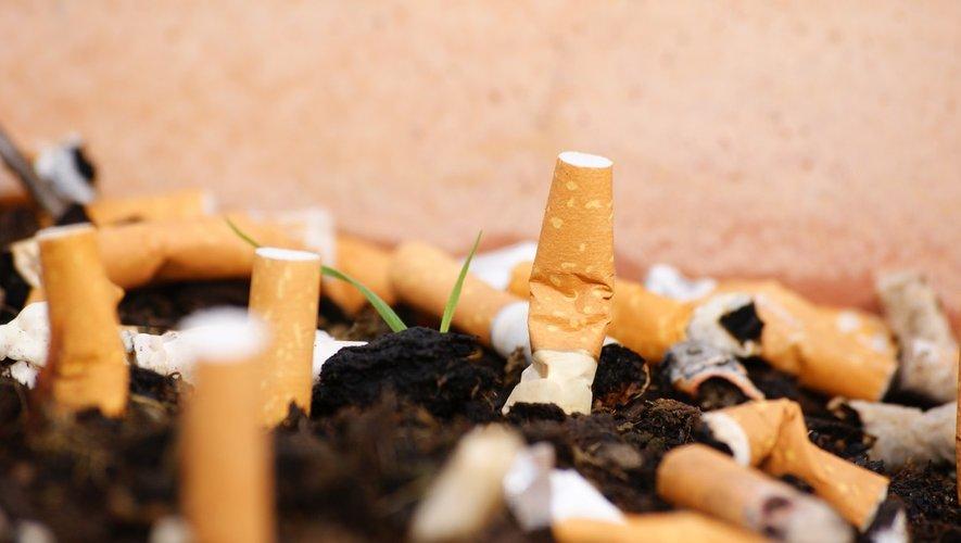 Tabac : enfin un protocole pour lutter contre le commerce illégal
