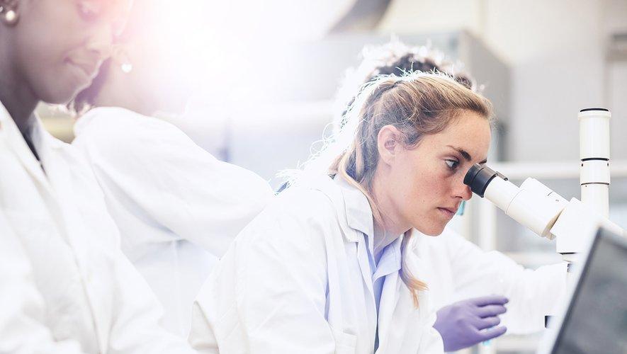 Des chercheurs espagnols ont commencé à travailler sur le développement d'un vaccin qu'ils espèrent pouvoir être efficace contre toutes les souches du virus Ebola