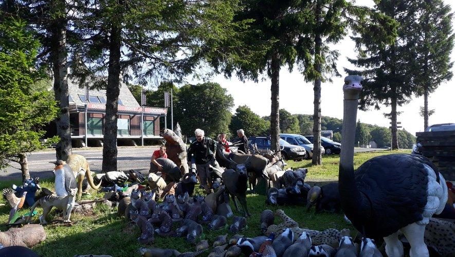 à Laguiole, 700 archers vont chasser l'ours ou le lapin avec vue sur le championnat d'Europe
