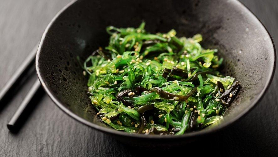 Les algues à table ? Oui, mais pas pour tout le monde !