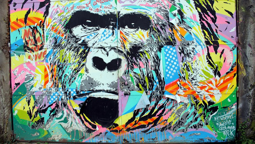 Le gorille de Jo Di Bona dégradé