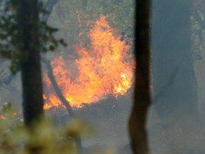 Plusieurs hectares partent en fumée près de Salles-Curan