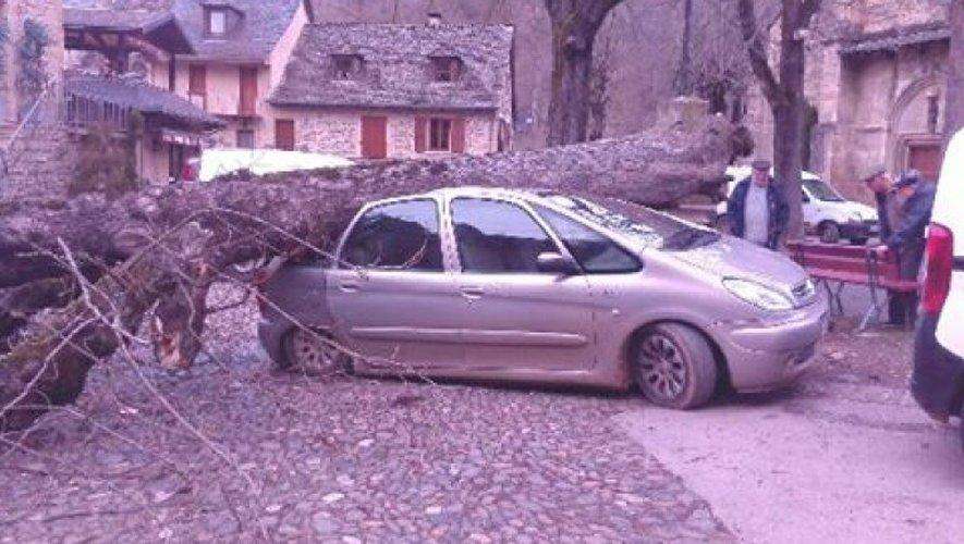 Le vent a eu le temps de faire des dégâts en Aveyron...