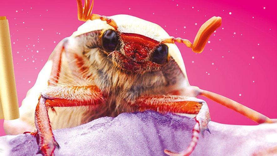 Embarquez pour la journée de l'abeille avec Micropolis