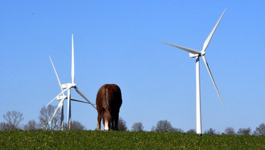 95 éoliennes sont actuellement en service en Aveyron. 133 autres sont autorisées.  José Torres