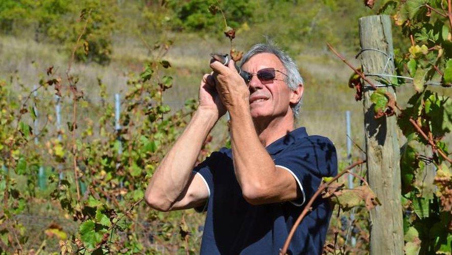 Alain dans ses vignes.