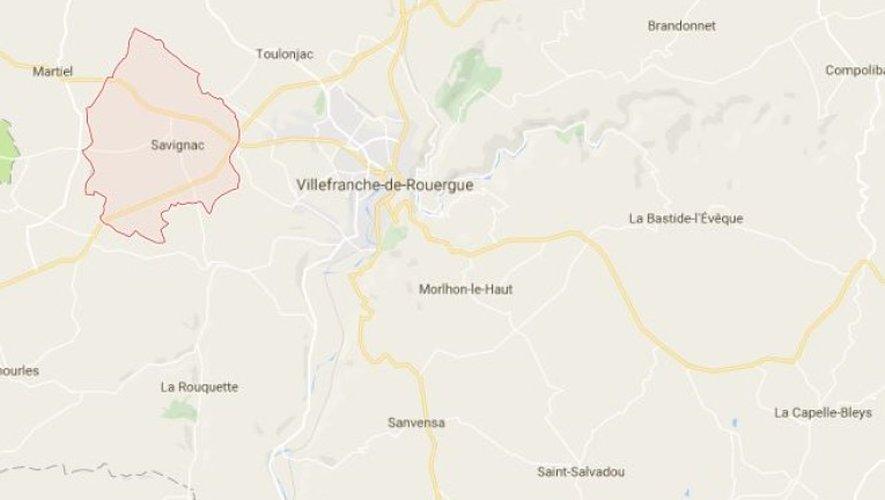 Savignac : deux sangliers tués dans deux accidents de la route