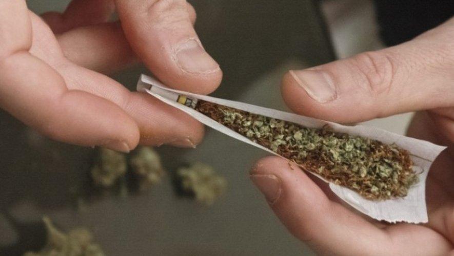Un Espagnol de 52 ans interpellé sur l'A75 avec 407kg de cannabis