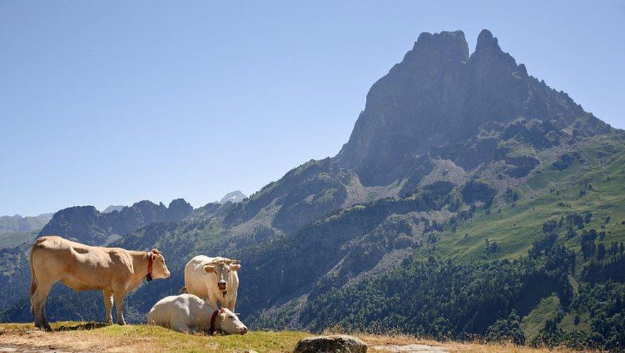 Pyrénées: chute mortelle pour un alpiniste au Pic du Midi d'Ossau