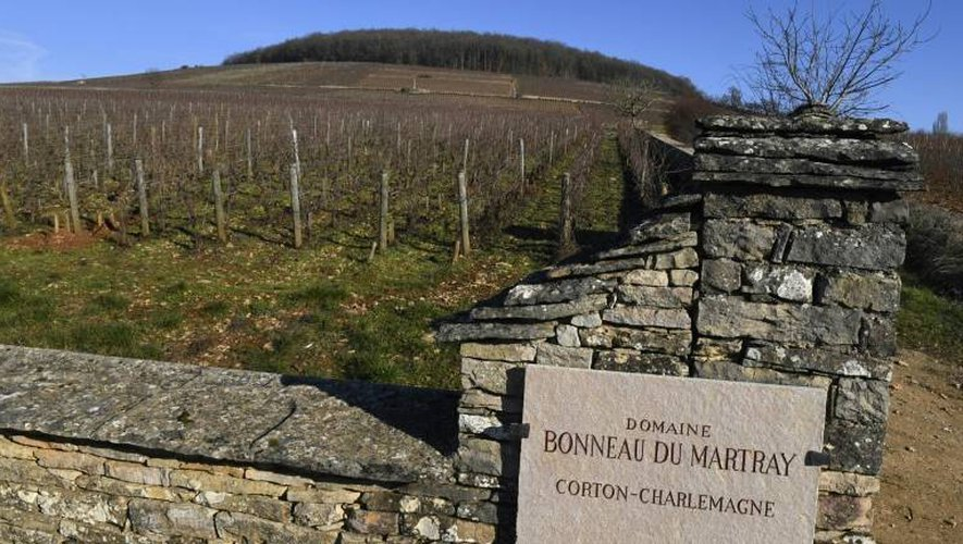 """Le """"Domaine Bonneau du Martray"""" près de Pernand-Vergelesses, le 6 janvier 2017 en Bourgogne"""
