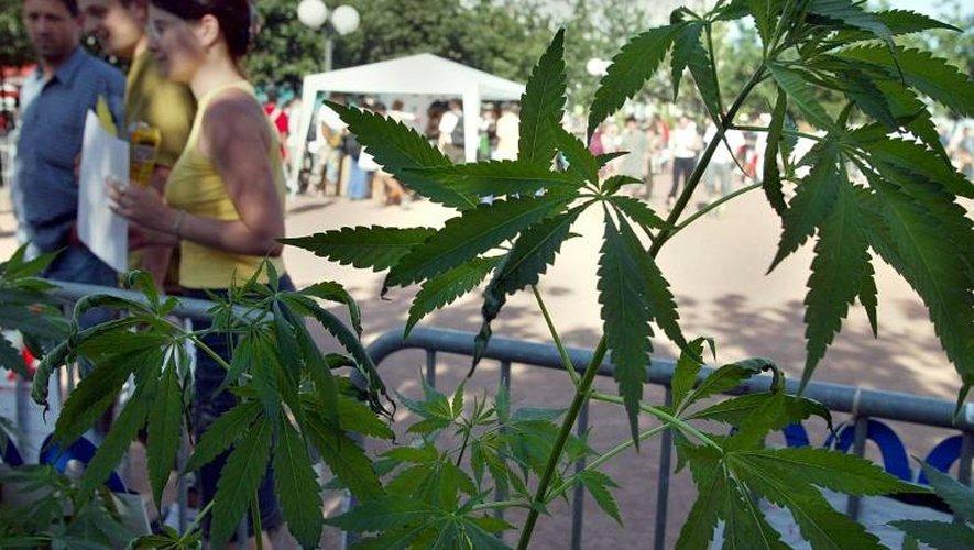 Des personnes se renseignent sur le cannabis, le 18 juin 2002 à Lyon