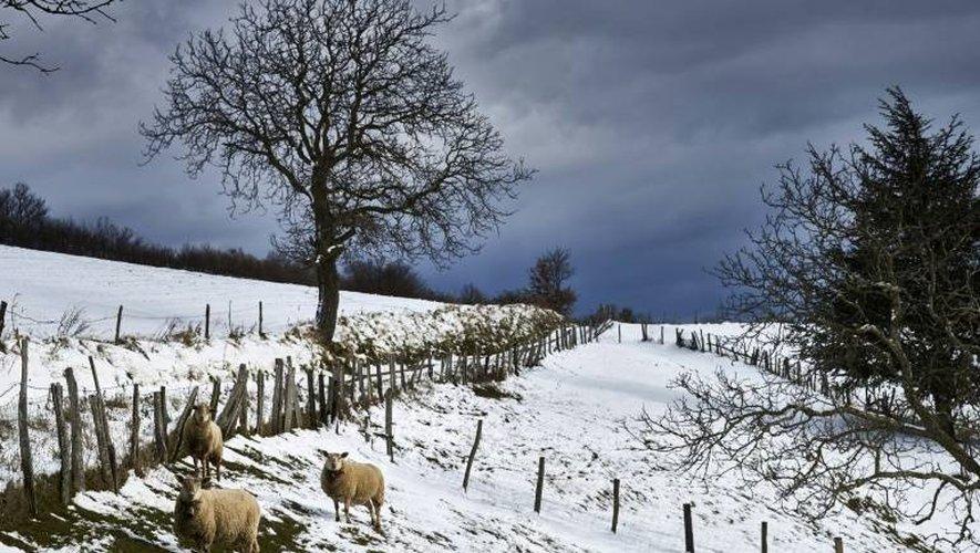 La neige recouvre le paysage, le 15 janvier 2017, près de Lyon