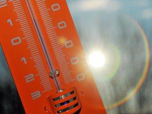 Un mercure qui dépassera les 20°C cette semaine.