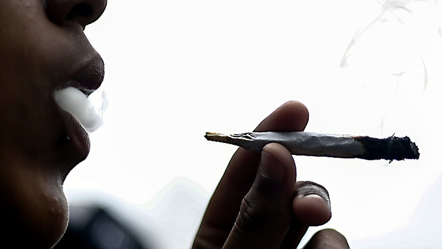 Un trafic de stupéfiants mis au jour au départ d'un lycée millavois