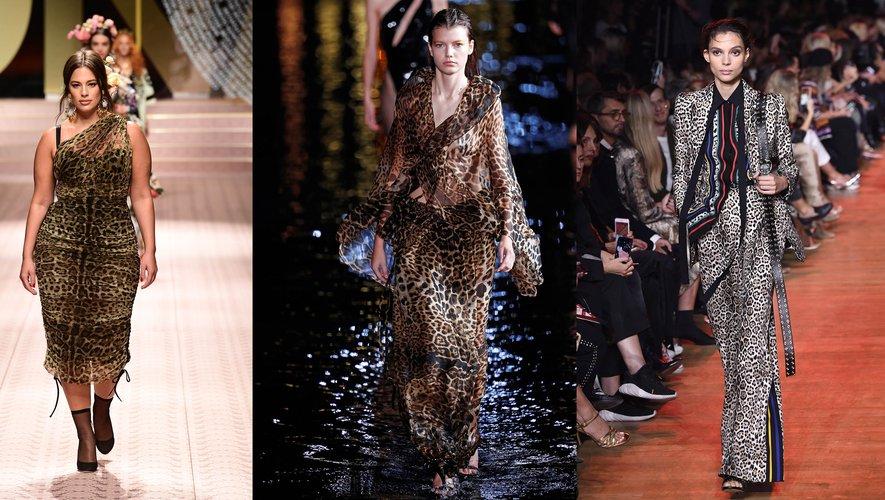 L'imprimé félin par Dolce & Gabbana, Saint Laurent, et Elie Saab.