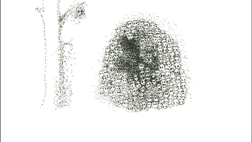 """""""Warzone"""" de Yoko Ono est attendu pour le 19 octobre."""