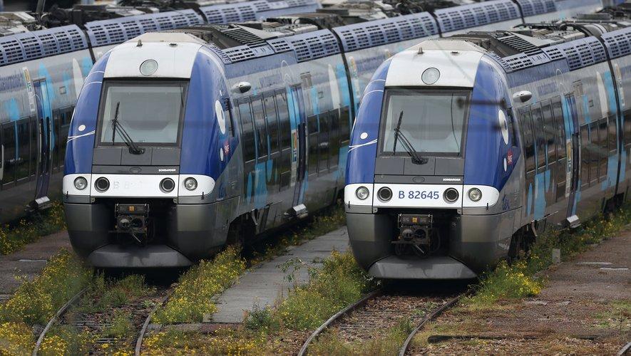 Désormais, l'achat de billets de train TER se fait uniquement sur Internet, par téléphone ou automates.