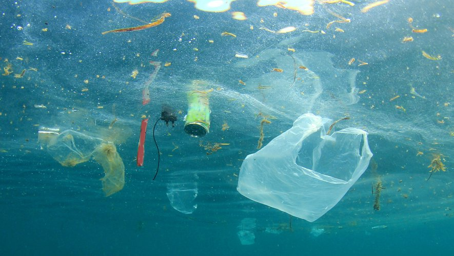 Du plastique dans notre alimentation !