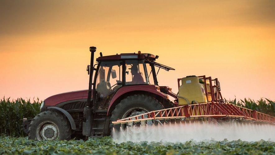 Pesticides : l'Anses interdit le métam-sodium