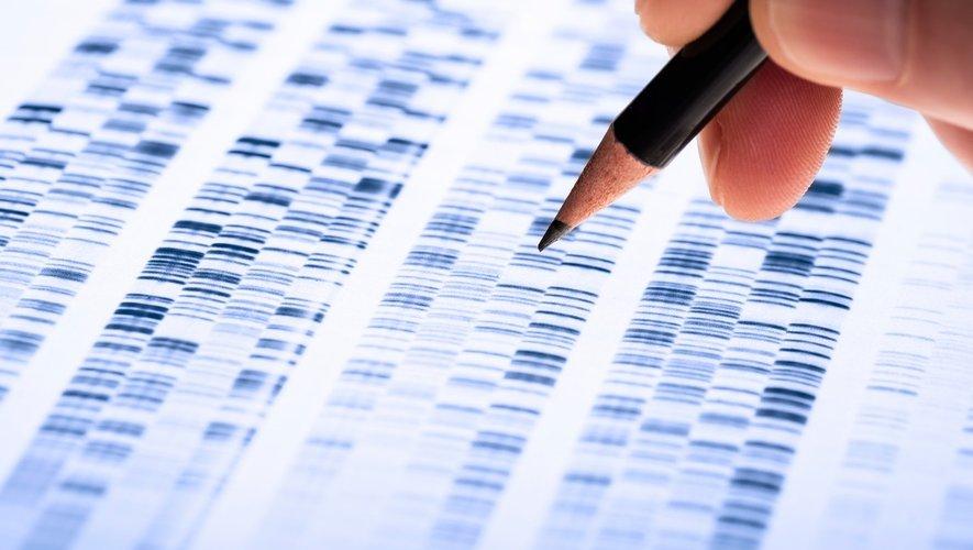 Cancers du sein : des tests génétiques pour toutes ?