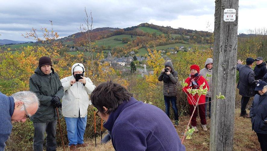 Les membres du club Patrimoine  ont planté l'arbre du centenaire