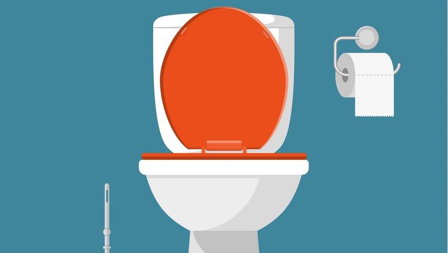L'accès à des toilettes salubres n'est toujours pas universel
