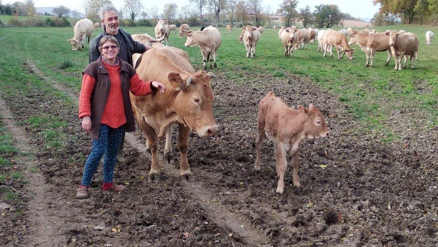 Laurence et Benoît Causse au milieu de leurs vaches.