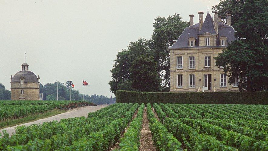 Gironde: premier millésime bio pour château Latour