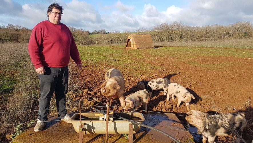 Guillaume Barrau et ses cochons de Bayeux.