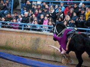La compagnie du Nord-Aveyron propose un spectacle féerique jusqu'au 4 janvier.