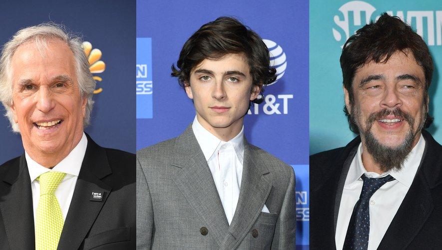 """Henry Winkler donnera la réplique à Timothée Chalamet et Benicio Del Toro dans """"The French Dispatch"""" de Wes Anderson."""