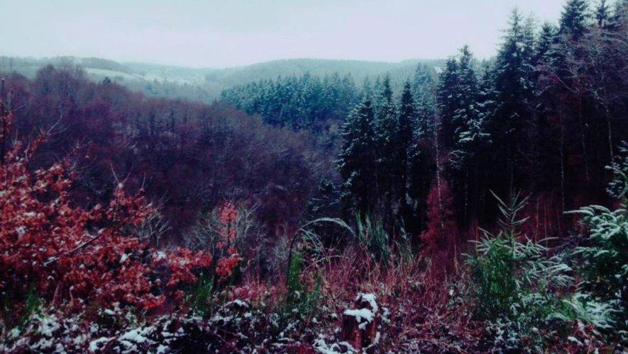Les magnifiques paysages du Lévezou seront le terrain de jeu des coureurs.