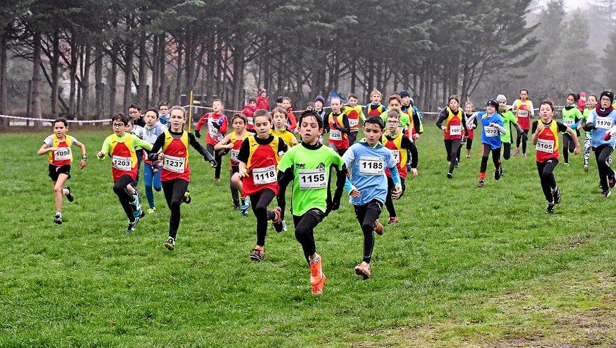 Des plus jeunes aux masters, ils étaient quelque 300 coureurs à participer à Villefranche dimanche.