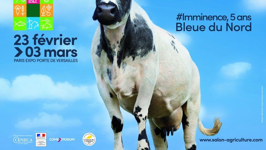 La vache égérie du prochain Salon de l'Agriculture s'appelle Imminence