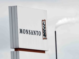 """Monsanto, repris par Bayer, a, selon la Coordination rurale, proposé """"une indemnité forfaitaire non négociable de 2.000 euros par hectare aux agriculteurs lésés."""